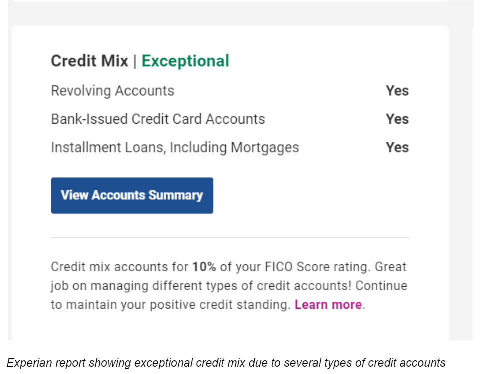 Experian Report Showing Exceptional Credit Mix Due To Several Types Of Credit Accounts