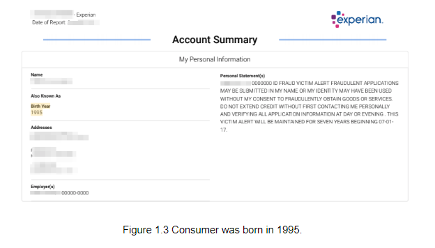 Image showing a consumer born in 1995.